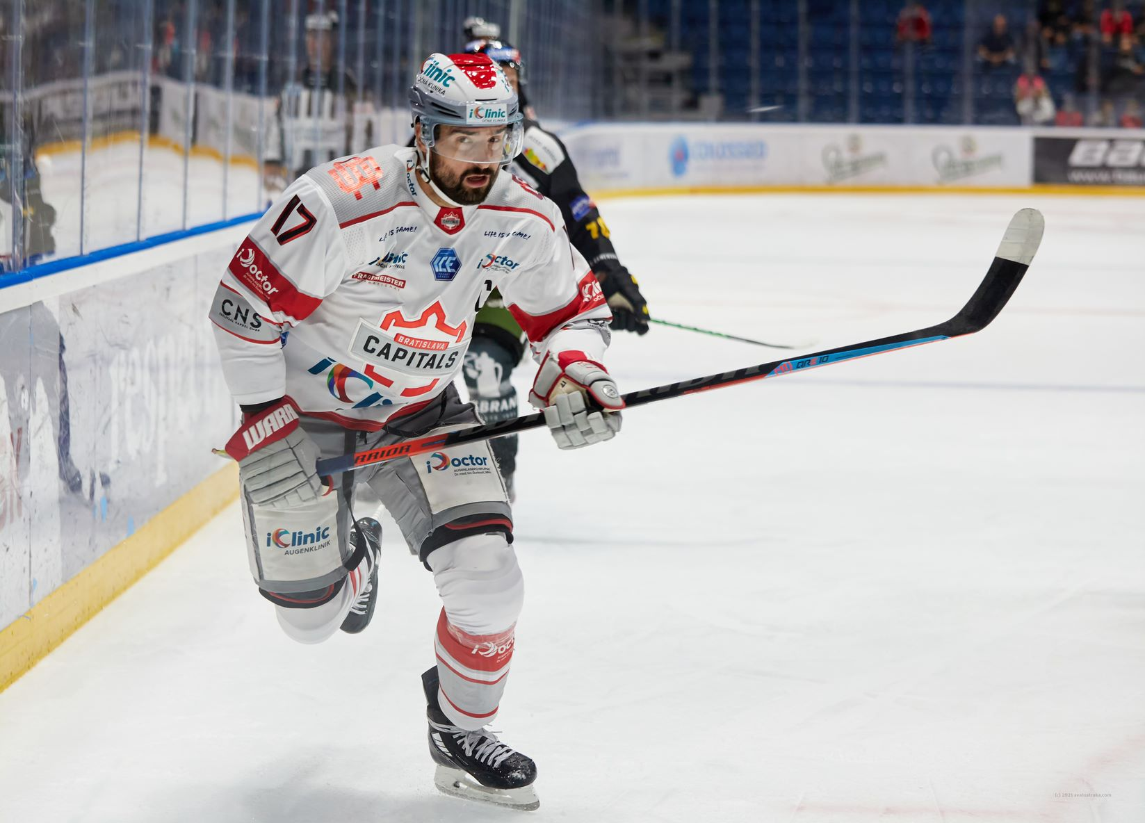 Preview: Steinbach Blackwings Linz